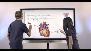 monitor interactivo smart